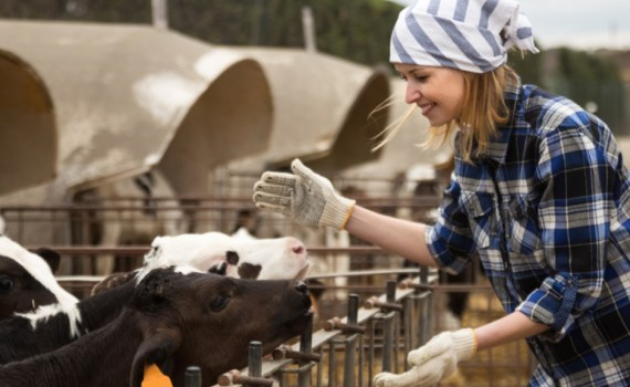 Canadian Dairy is Committed to a Sustainable Future